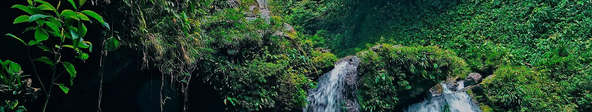 Naturreisen Panama