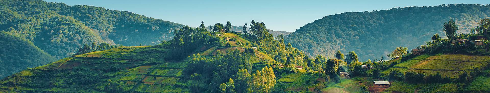 Naturreisen Ruanda