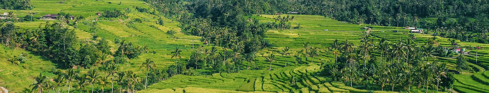 Bergurlaub Bali
