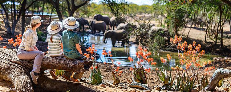 Safari e mare in famiglia