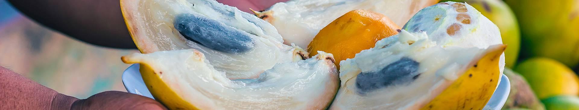 Rutas gastronómicas y enológicas por Perú