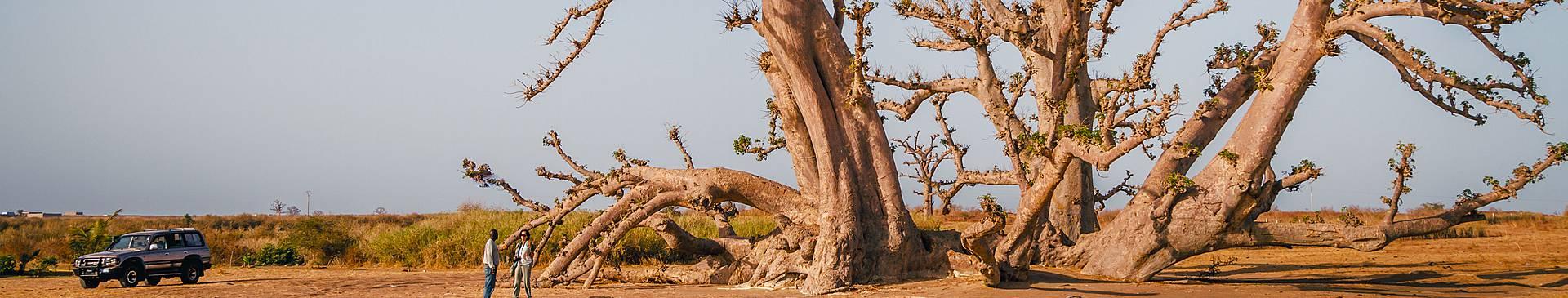 Viajes al desierto de Senegal
