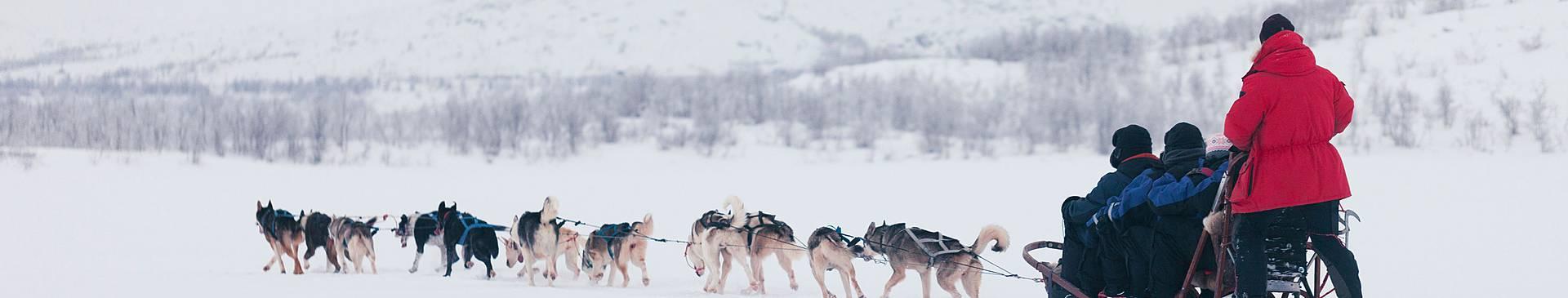 Voyage en groupe en Finlande