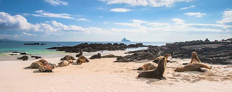 Naturaleza de Galápagos de Isla en Isla