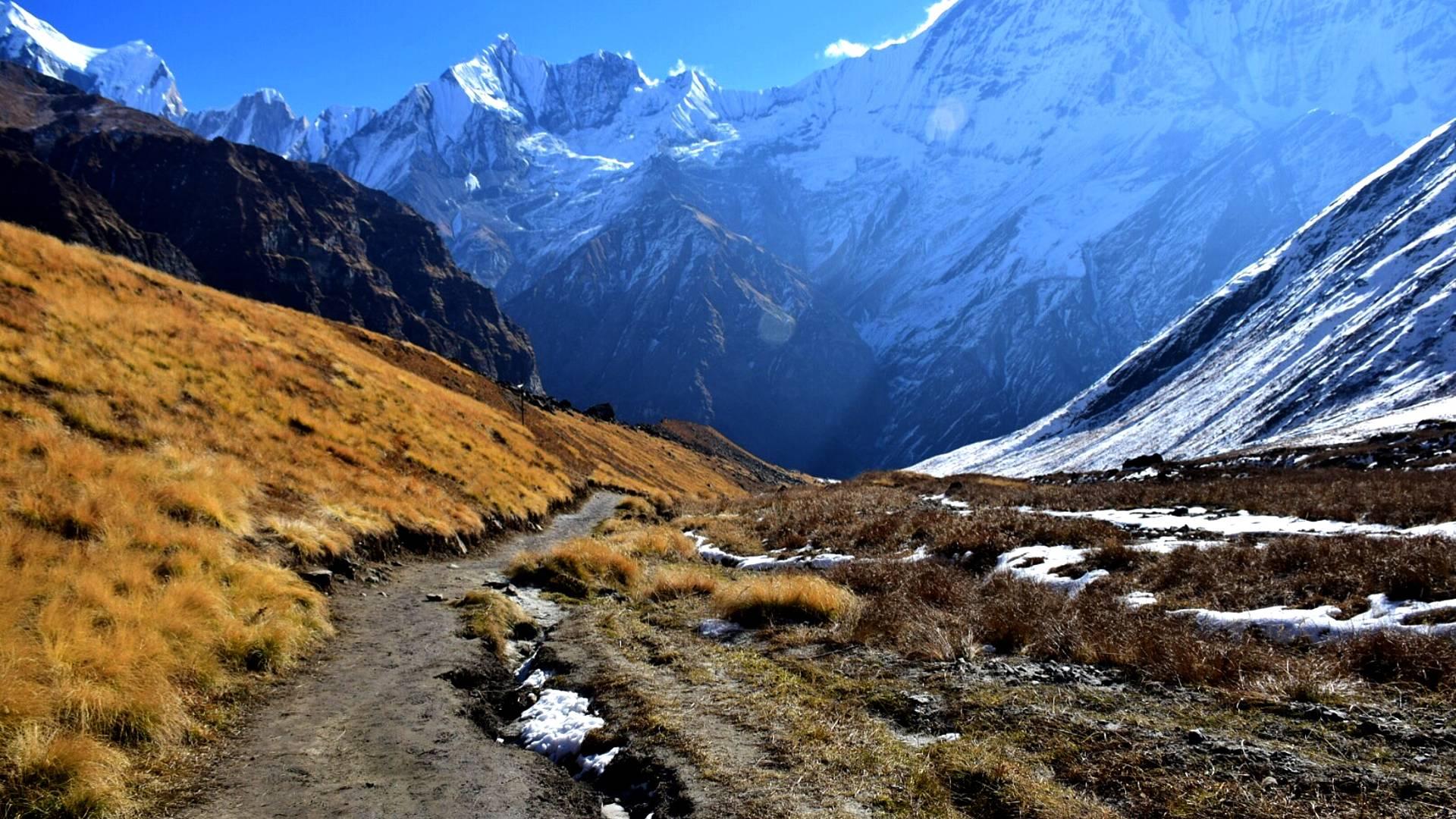 Exkursion zum magischen Himalaya