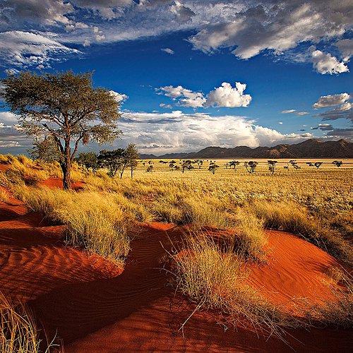 Expédition au coeur des terres sauvages - Windhoek -