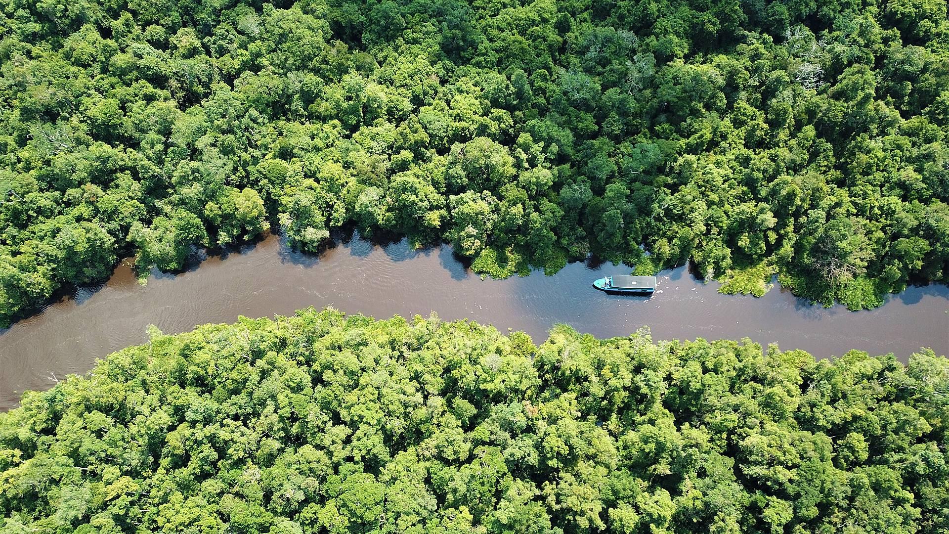 Naturaleza en Borneo, Komodo y Bali