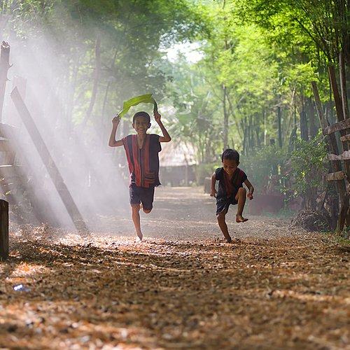 En pleine nature, du nord à Koh Samui - Bangkok -