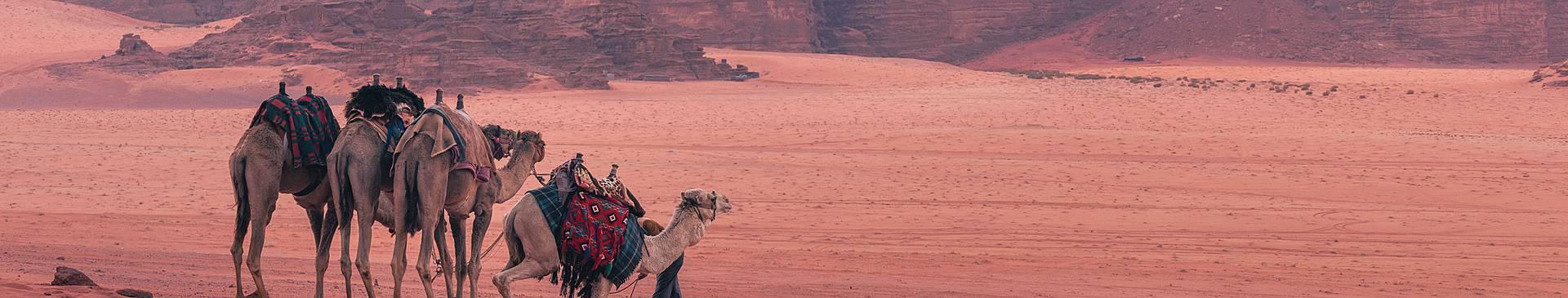 Viaggi nel deserto in Giordania
