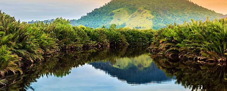 Aventura entre Orangutanes e Islas Gili