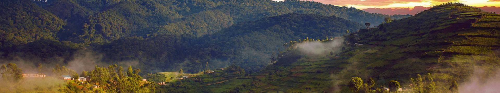 Individualreisen Ruanda