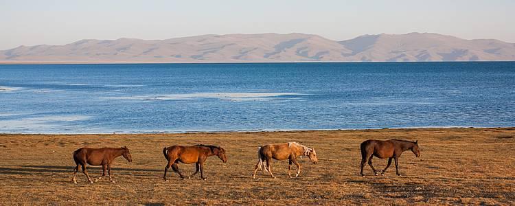 Percorso a cavallo sulle tracce dei nomadi