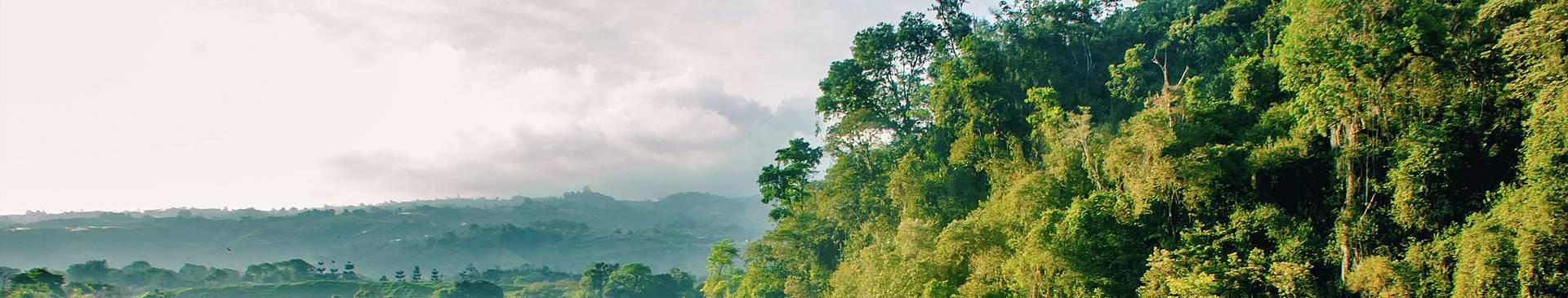 Costa Rica in spring