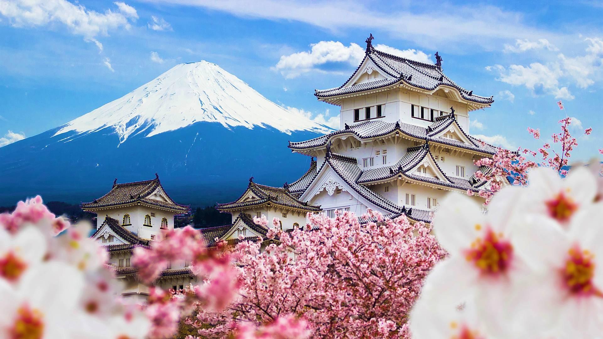 El encanto y la magia de Japón