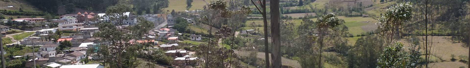 Insilibi