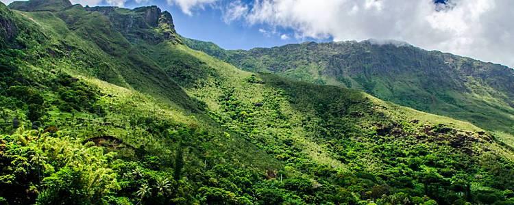 La Grande Terre et l'île des Pins au volant