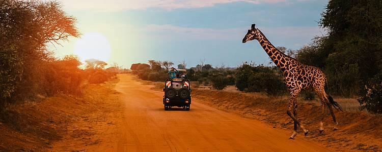 Cultural trip to Kenya