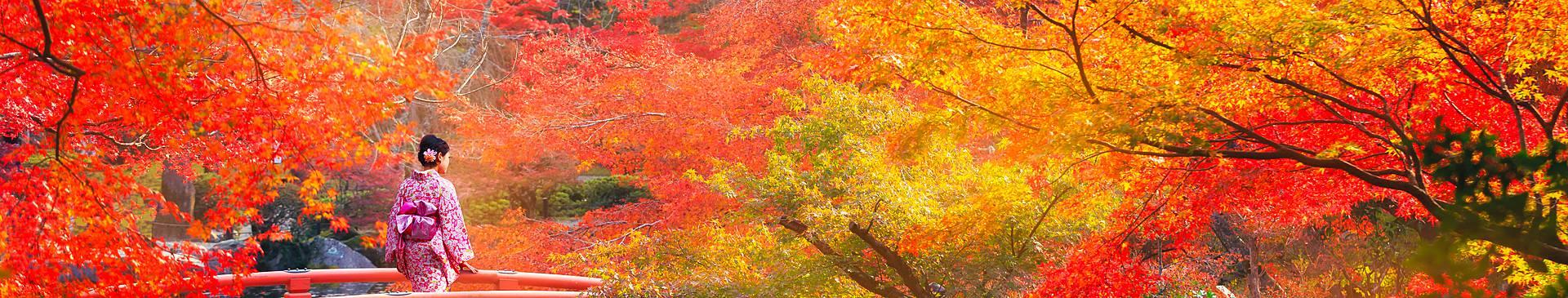 Viaggi in Giappone in autunno