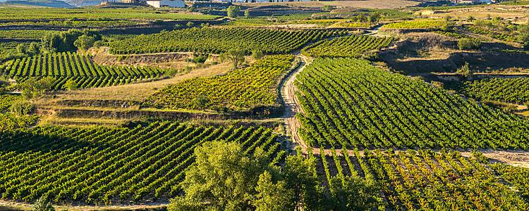 La Rioja, cities and wine of Northern Spain