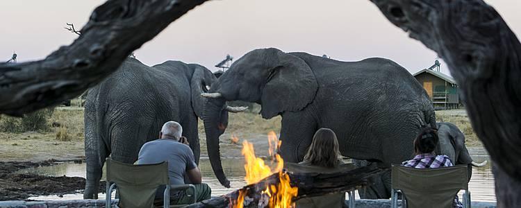 Camping-Safari in der Gruppe