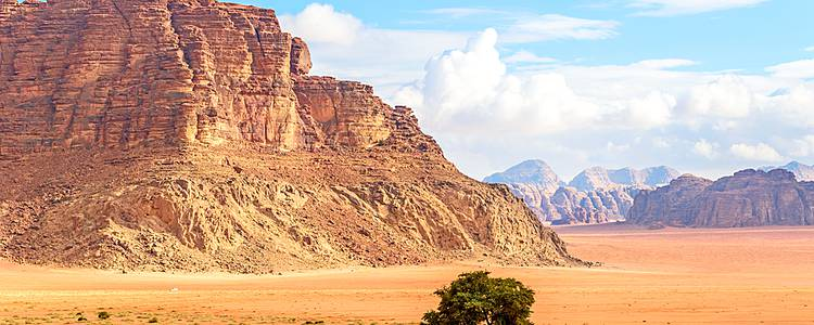 Excursion to Jordan's desert castles with Petra and Wadi Rum