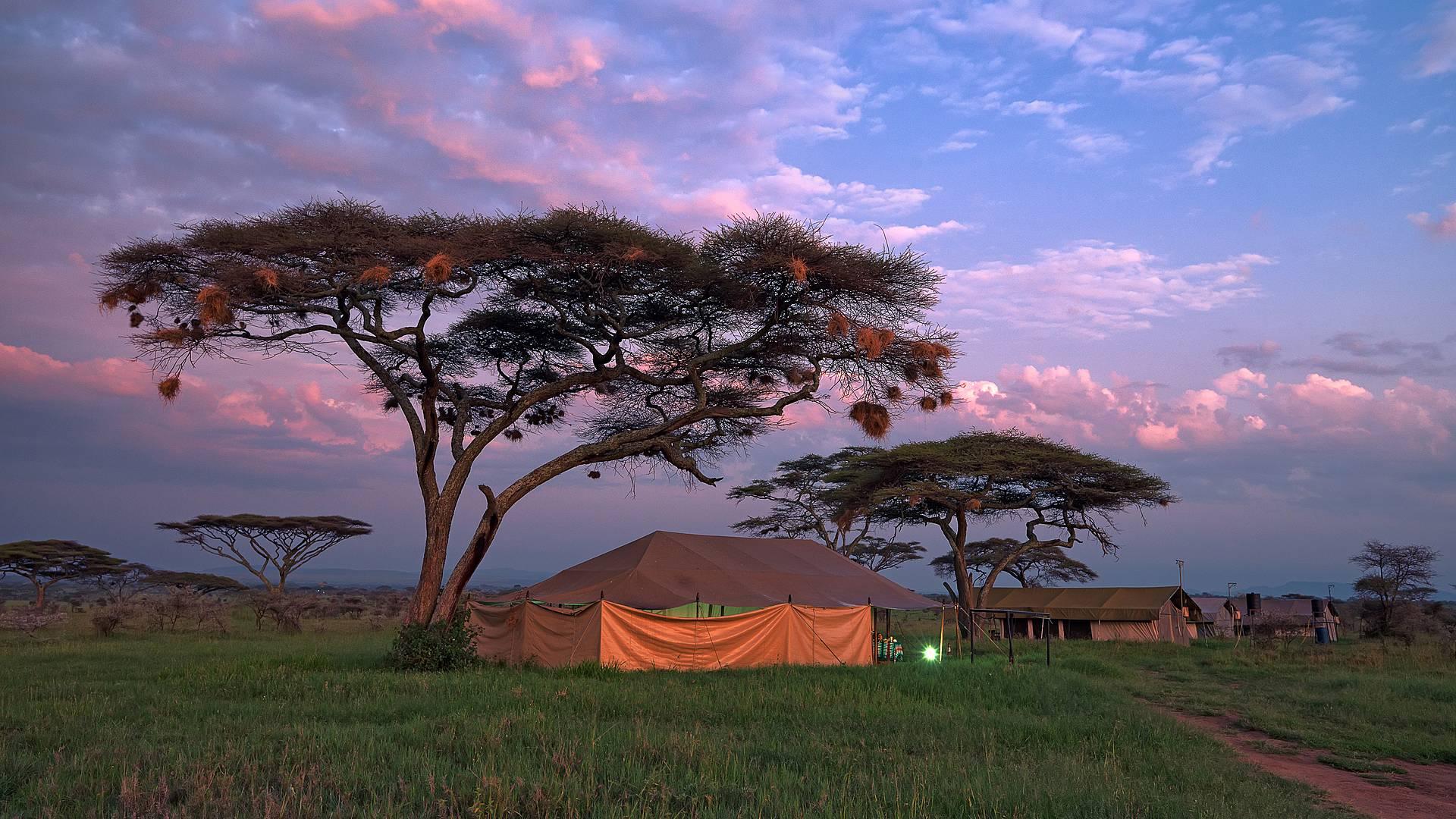 Camping-Safari durch die schönsten Nationalparks