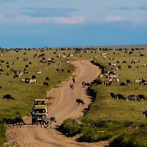 Safari et randonnées dans les montagnes d'Usambara -