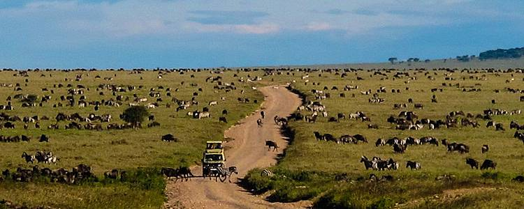 Safari et randonnées dans les montagnes d'Usambara