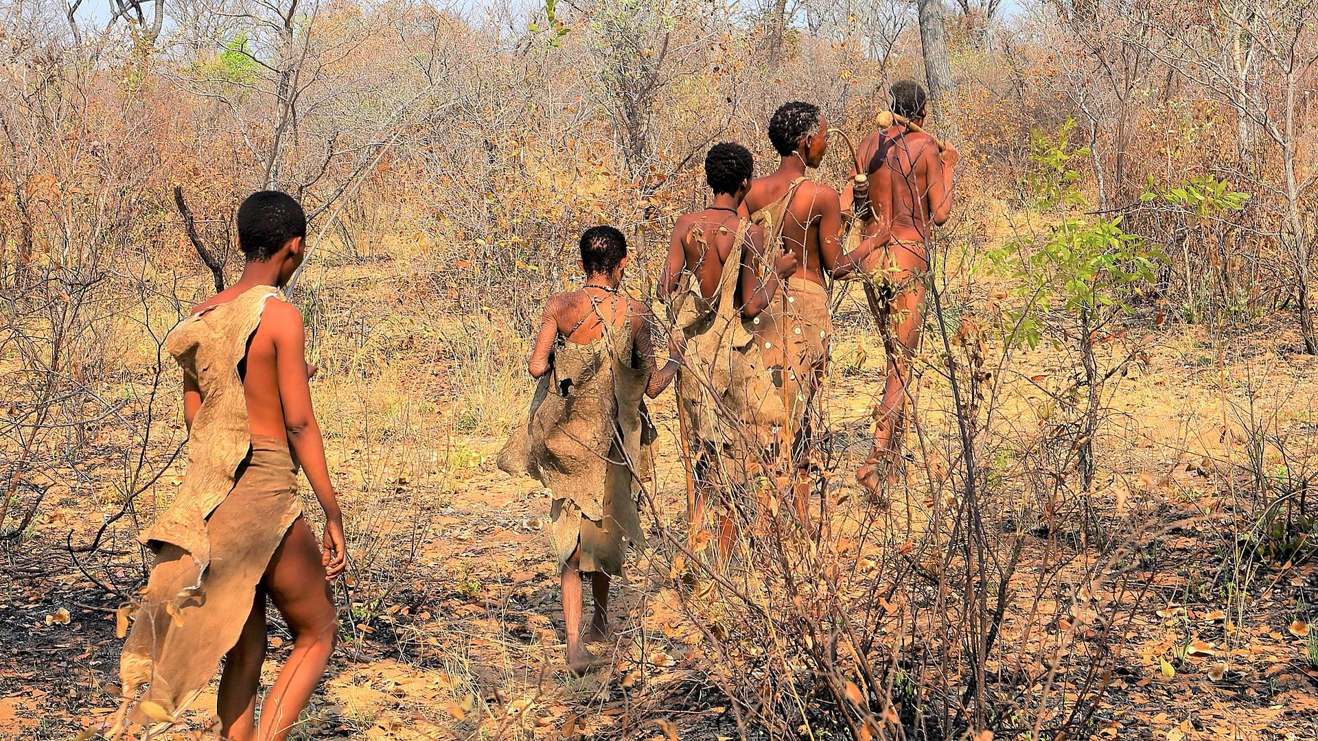 Experiencias culturales y naturaleza salvaje