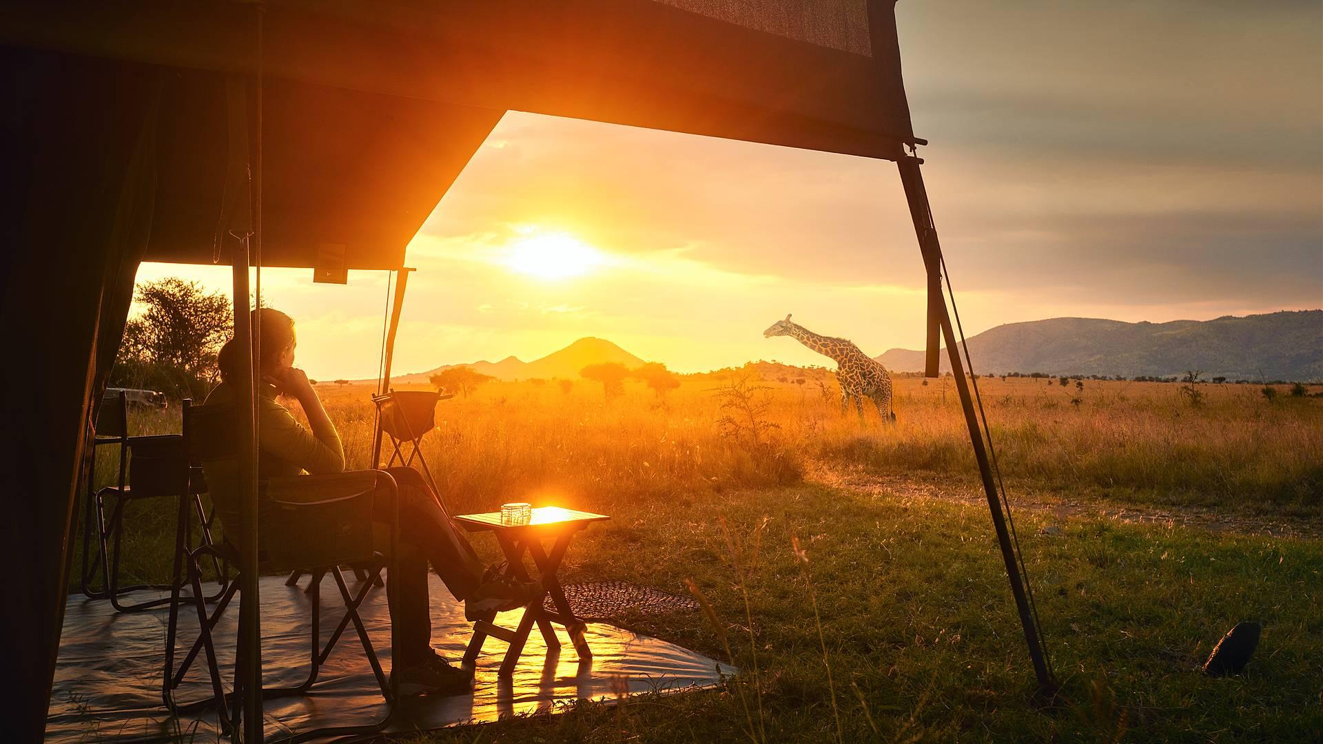 Safari móvil por el Norte y Cataratas Victoria