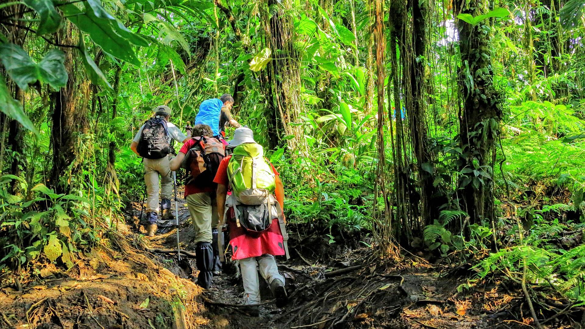 Trekkingreise für Gipfelstürmer