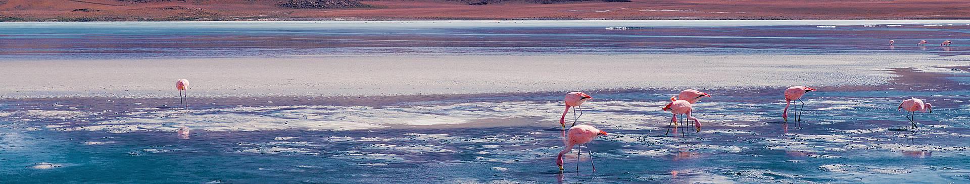 Viaggi in Bolivia in inverno