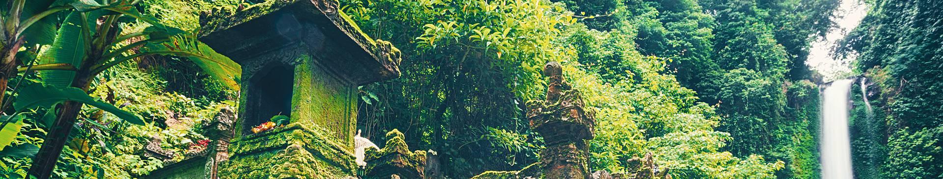 Bali rainforest tours