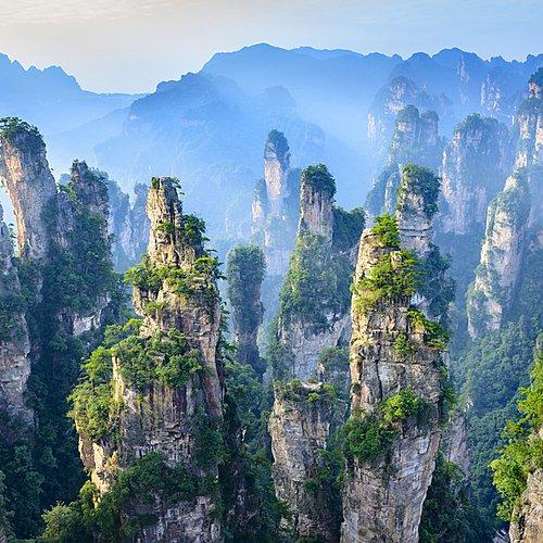 De la Venise d'orient au Pandora du film Avatar -