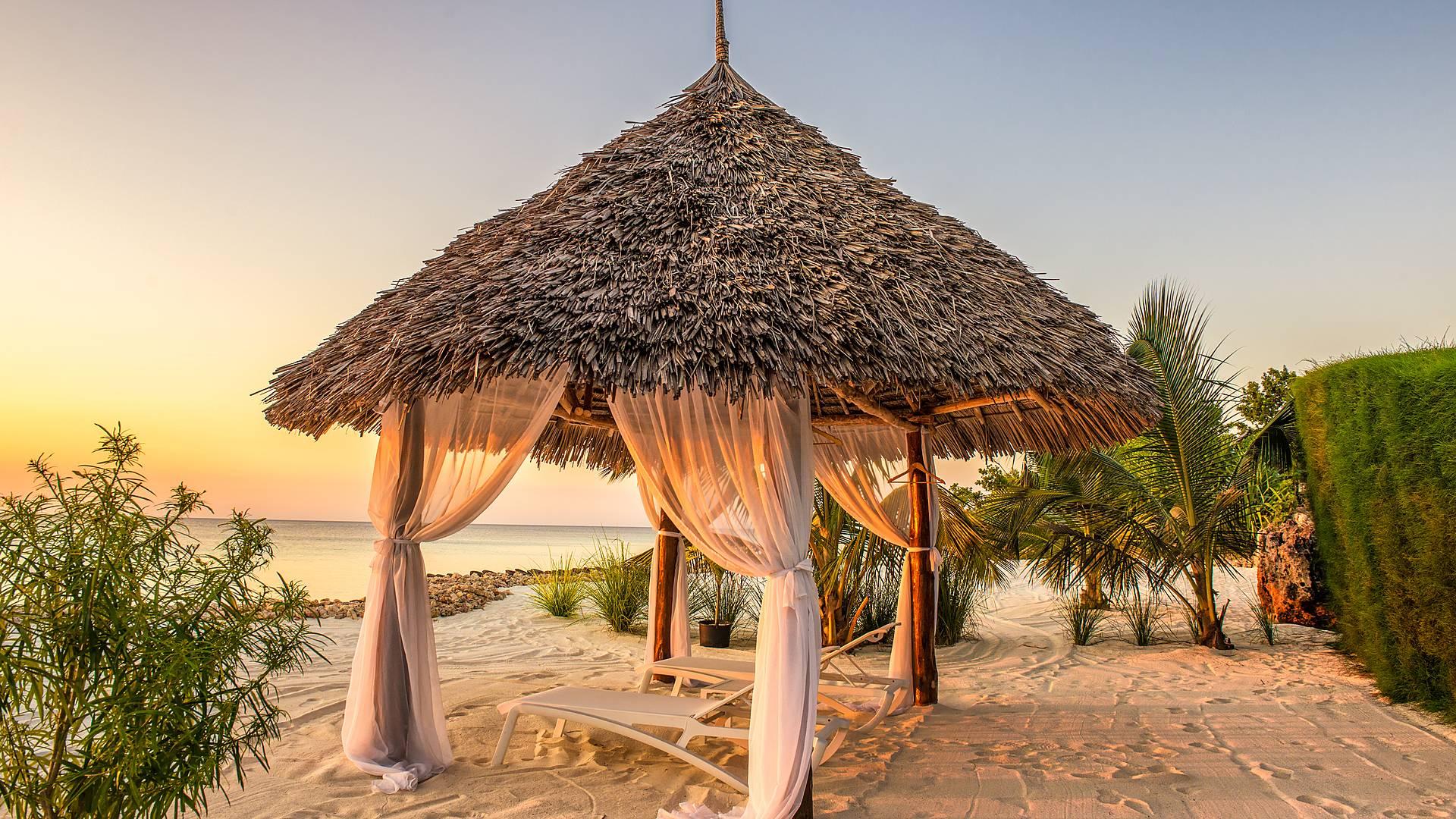 Honeymoonda sogno, safari e Zanzibar