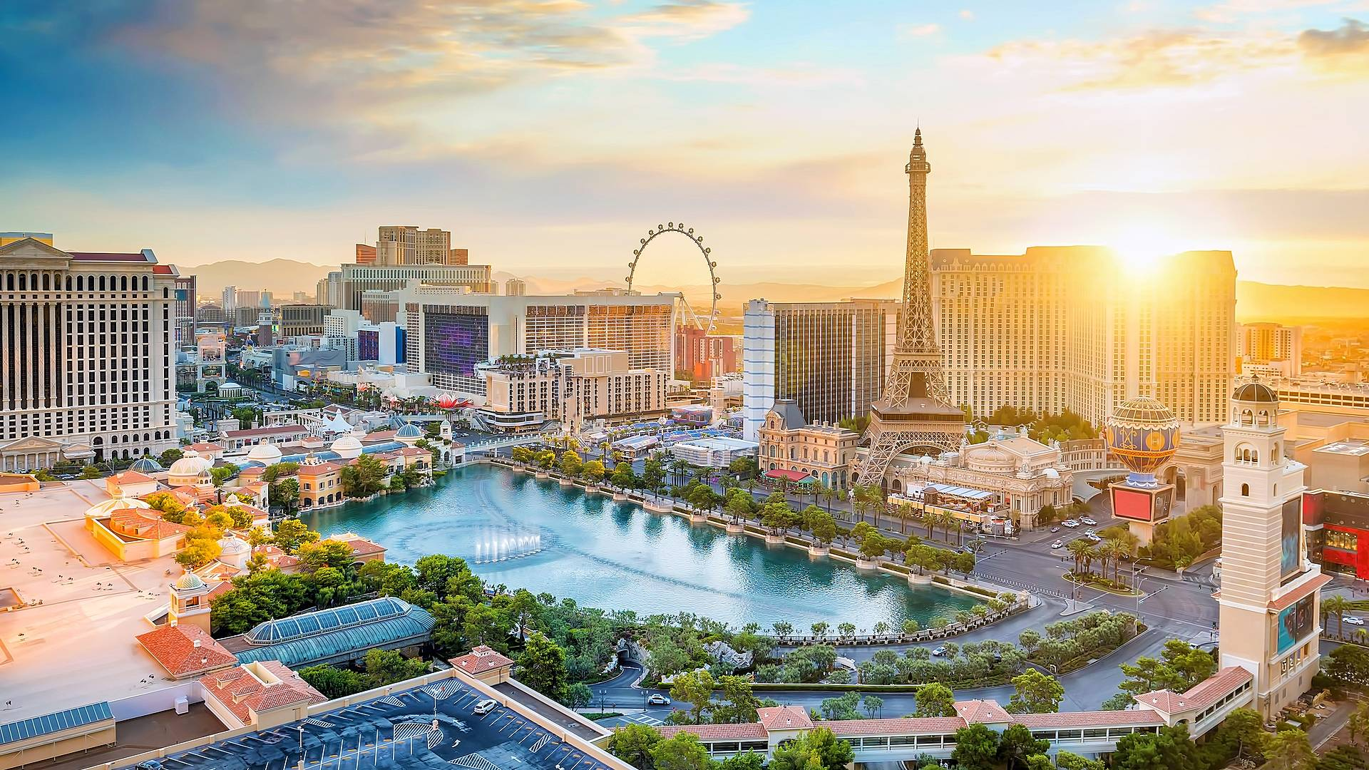Vive San Francisco, Las Vegas y Los Angeles