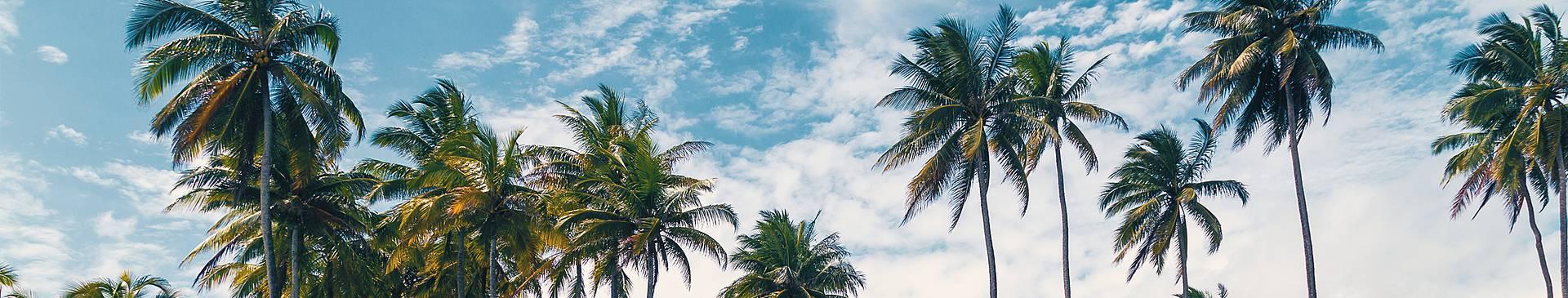 Viajes a Ecuador en verano