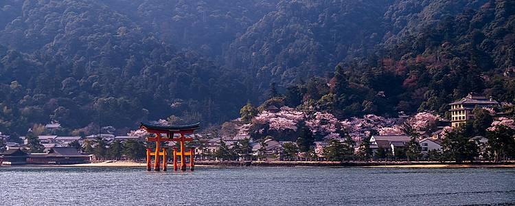 Road trip de la mer du Japon à la mer de Setouchi