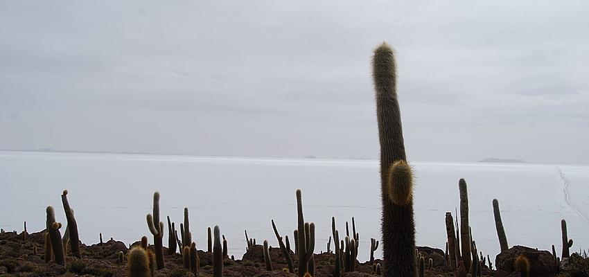 Paesaggio del Salar d'Uyuni