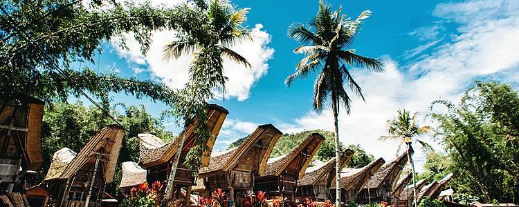 Culturele hoogtepunten in Zuid en Centraal Sulawesi