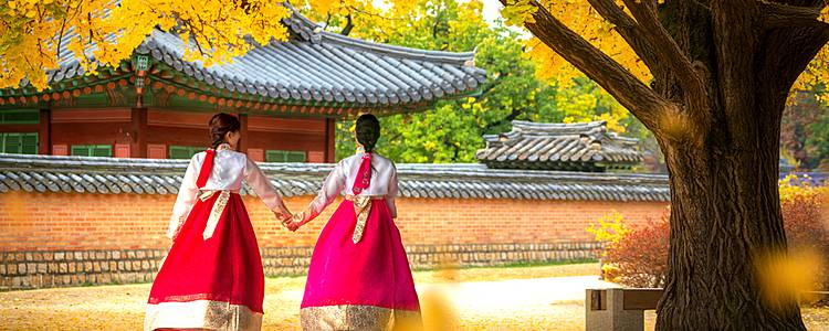 Discover Korea with your family