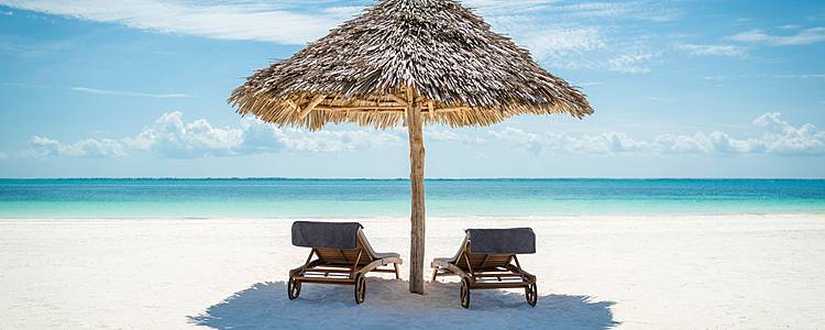 Huwelijksreis naar de wildparken en idyllisch Zanzibar