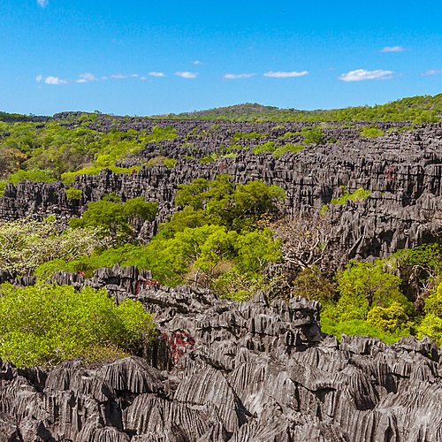 Le Nord de la Grande Île et les Tsingy de l'Ankarana -