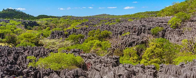 Le Nord de la Grande Île et les Tsingy de l'Ankarana