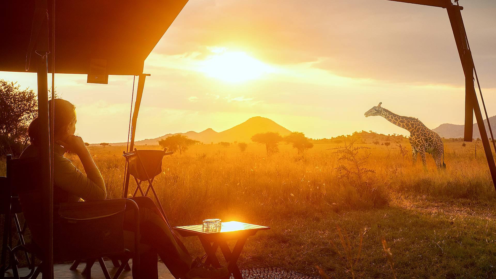 Tsavo Est e Tsavo Ovest in campo tendato mobile