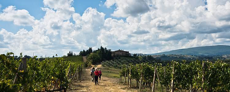 Toskana - von Florenz nach Siena