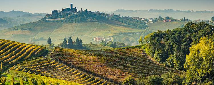 Escape to Turin and Piedmont