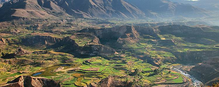 Lake Titicaca, Colca Canyon and the Sacred Valley
