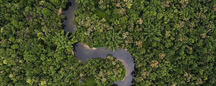Journey to Colombia's Amazon