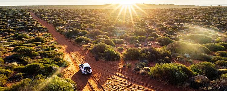 Parchi nazionali, campeggio e safari